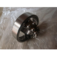 Plastic Ball Bearings China